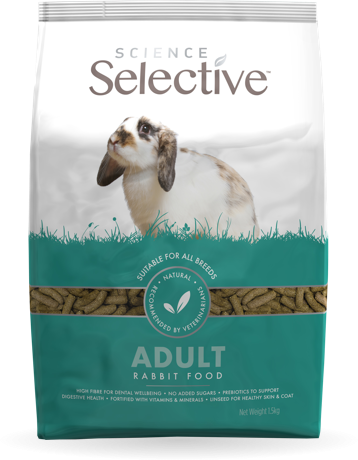 science-selective-adult-rabbit-front