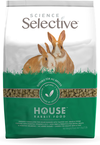 science-selective-house-rabbit-front