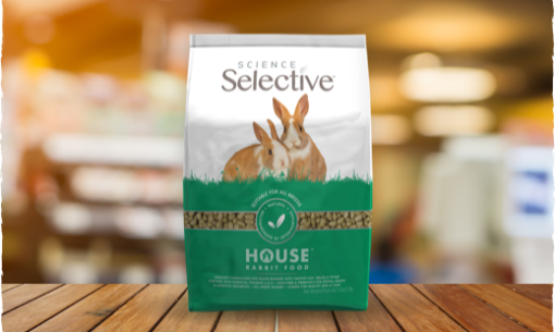 science-selective-house-rabbit-stock
