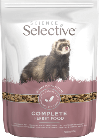 ss-ferret-food-front