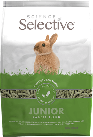ss-rabbit-junior-food-front