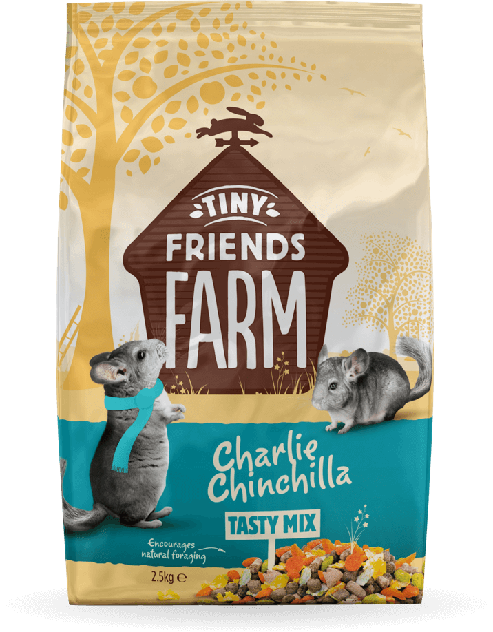 tff-charlie-chinchilla-front