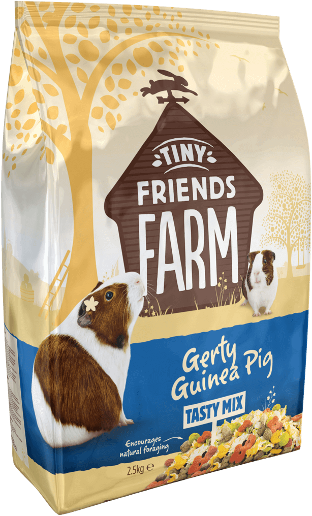 tff-gerty-guinea-pig-side