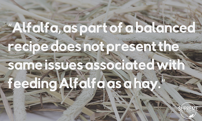 supreme-alfalfa-timothy-hay-quote