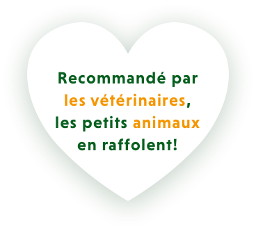 Home Heart in French