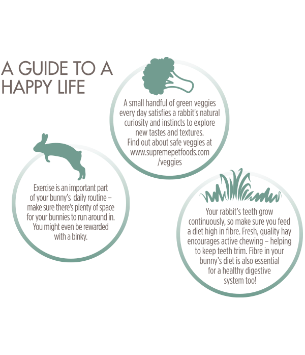 Happy-Life--Guide-Grain-Free-Rabbit-Food